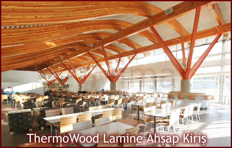 thermowood-lamine-ahsap-kiris